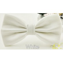 Pajarita blanca minicuadros
