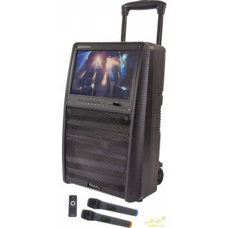 Altavoz portatil karaoke pantalla tft 15 pulgadas